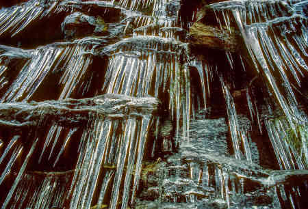 YOSEMITE ICICLES 2